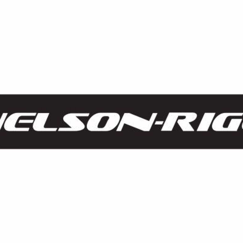 NELSON-RIGG Logo