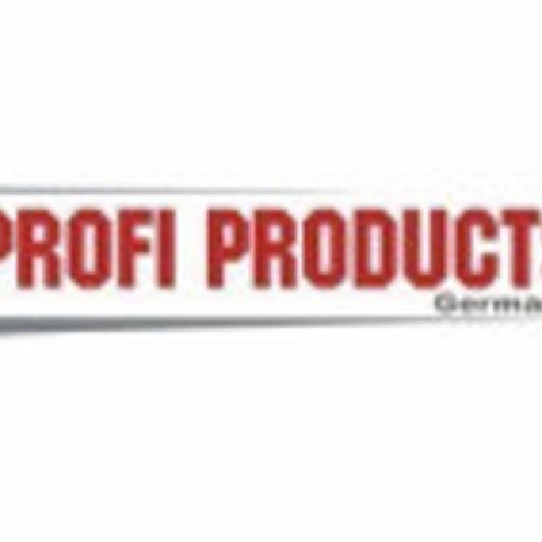 PROFI Logo