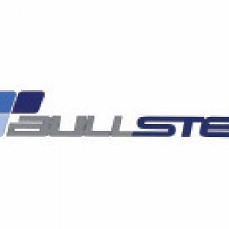 BULLSTER Logo