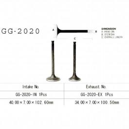 VALVE, INTAKE GG-2020-IN