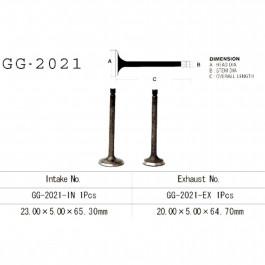 VALVE, INTAKE GG-2021-IN