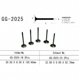 VALVE, INTAKE GG-2025-IN